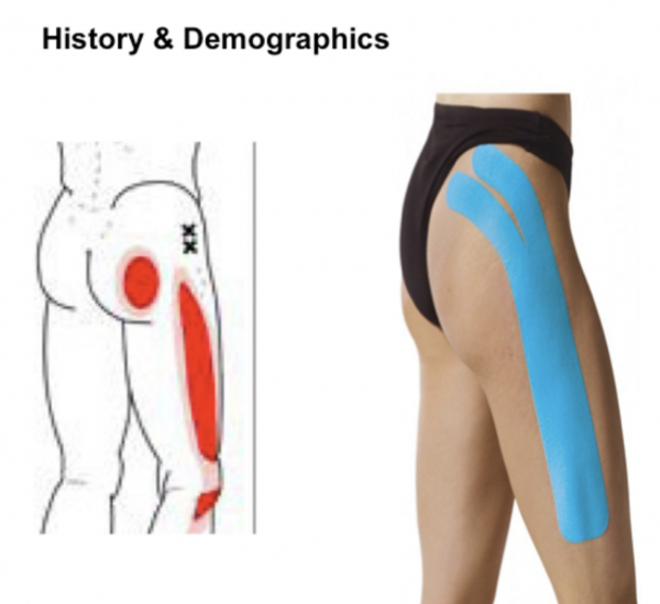History & Demographics
