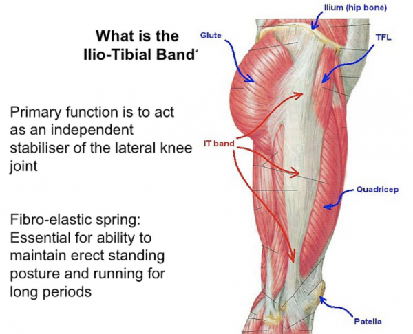 What is the llio-tibial band